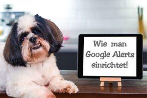 wie man google alerts einrichtet